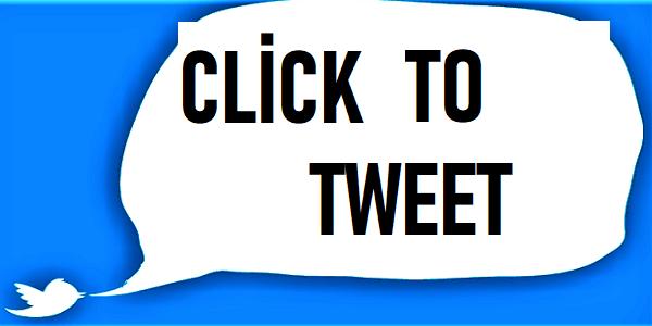 Wordpress Yazılara Tweet Kutusu Nasıl Eklenir/Seçilen Metni Twittle