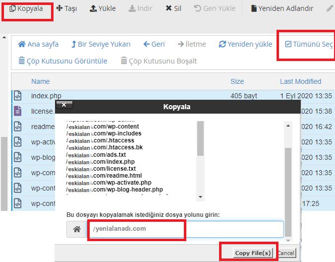 cPanel WordPress Alan Adı Değiştirme