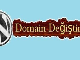 wordpress domain degistirme