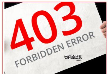 403 Forbidden Error Hatası Çözümü