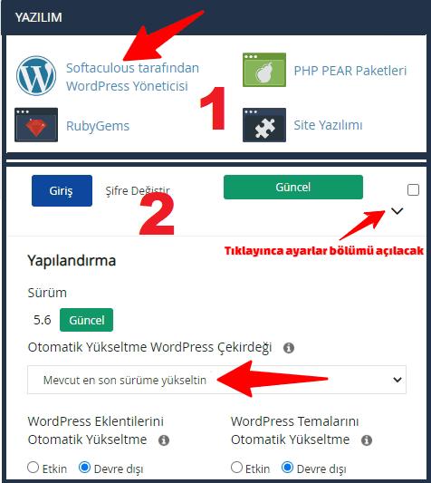 cPanel Softaculous ile WordPress Otomatik Güncelleme