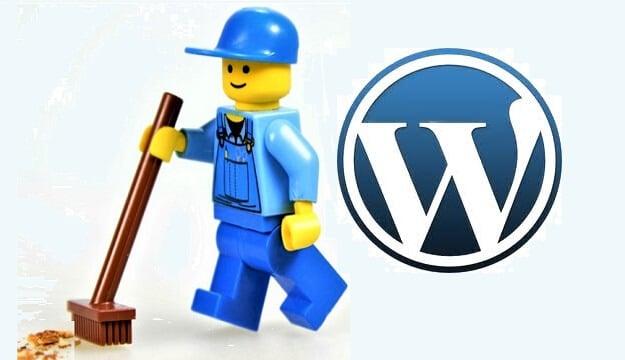 wordpress eklenti kalintilarini ve gereksiz dosyalari temizleme