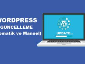 WordPress Güncelleme-Otomatik ve Manuel