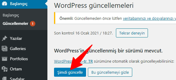 WordPress Güncelleme-Admin Panel 2