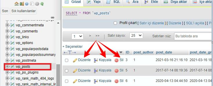 phpMyAdmin Gönderi Düzenleme