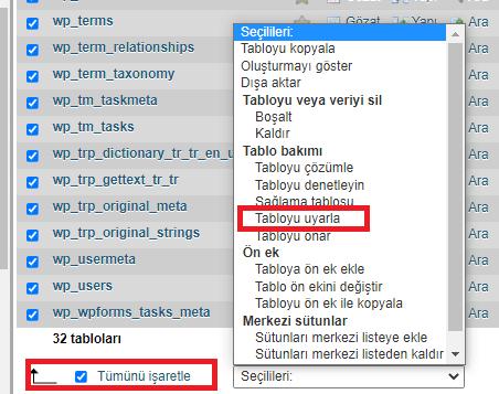 phpMyAdmin ile Veritabanı Optimize Etme