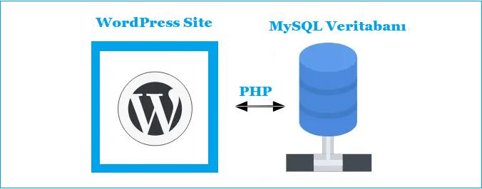 WordPress+PHP+MySQL