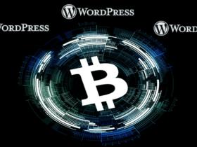 En İyi WordPress Kripto Para Temaları